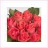 Ciemny różowy